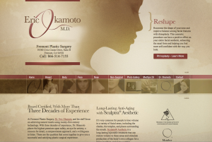 plastic surgeon in fremont, breast augmentation, plastic surgery in east bay, medical website design
